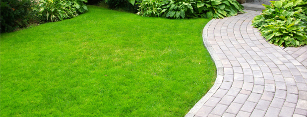 Beautiful Lawns Llc Lawn Care Services Serving Albany Ny